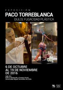 2016-10-torreblancacasweb